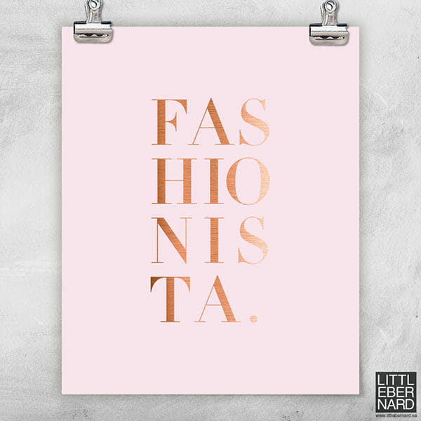 Fashionista rosa poster