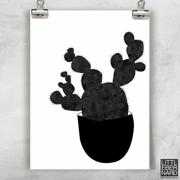 Kaktus poster