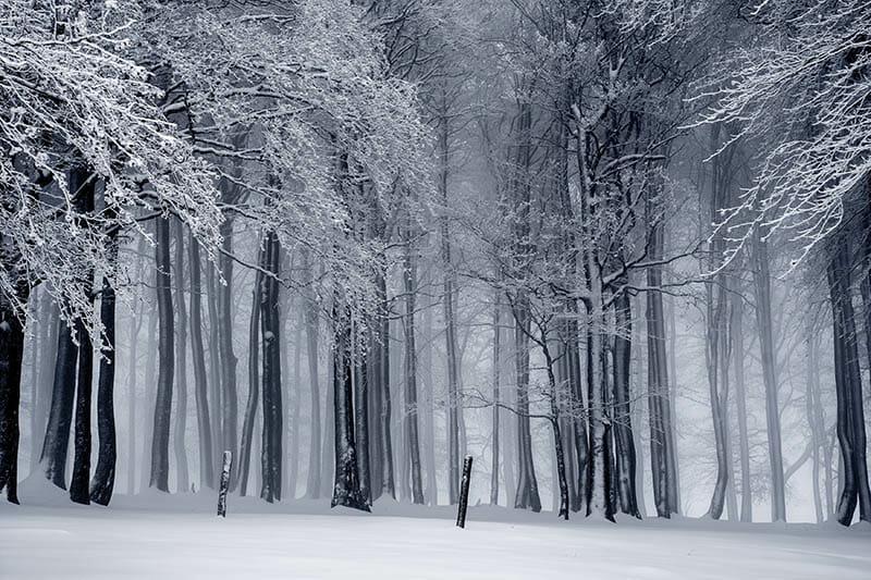 Stor vinter-rea på inredning och möbler
