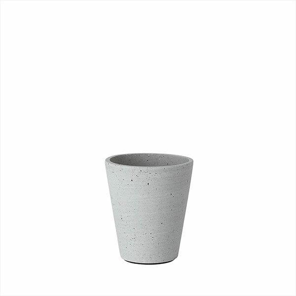 Blomkruka Coluna, Ljusgrå, Liten