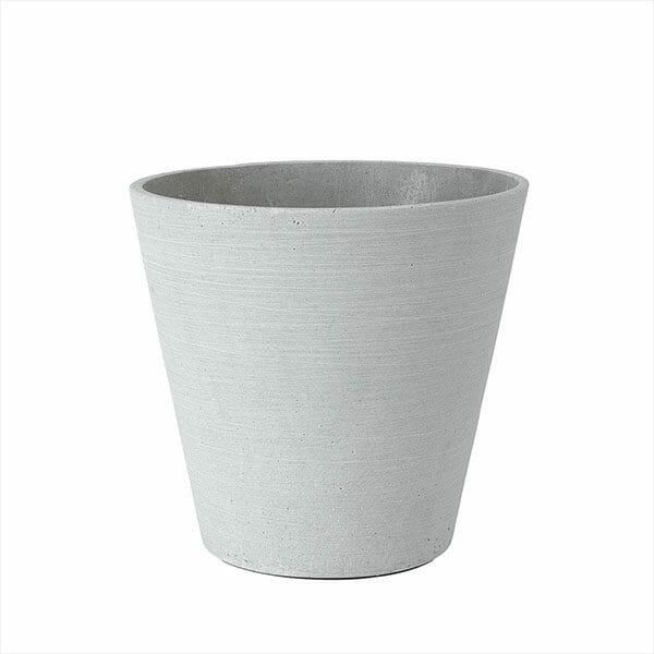 Blomkruka Coluna, Ljusgrå, Stor