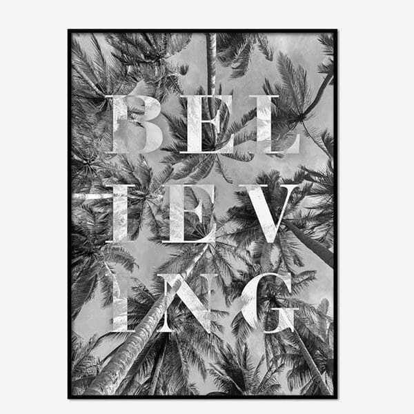 Poster Believing