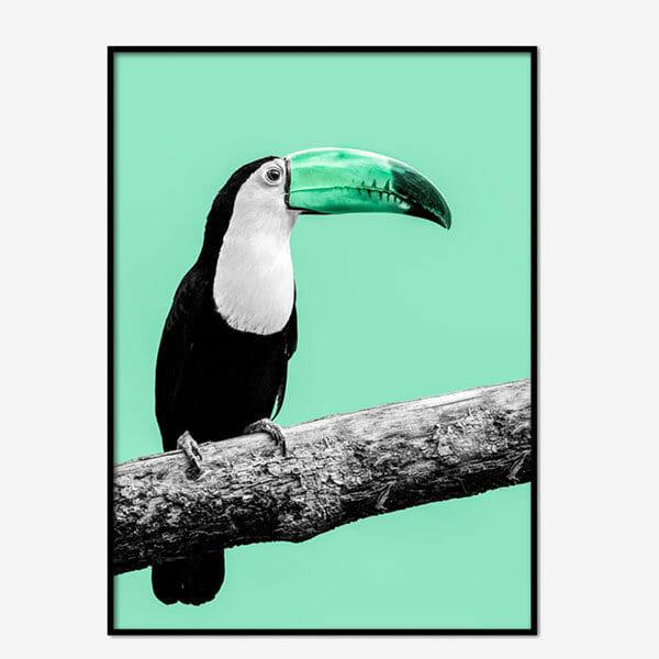 Poster Green bird