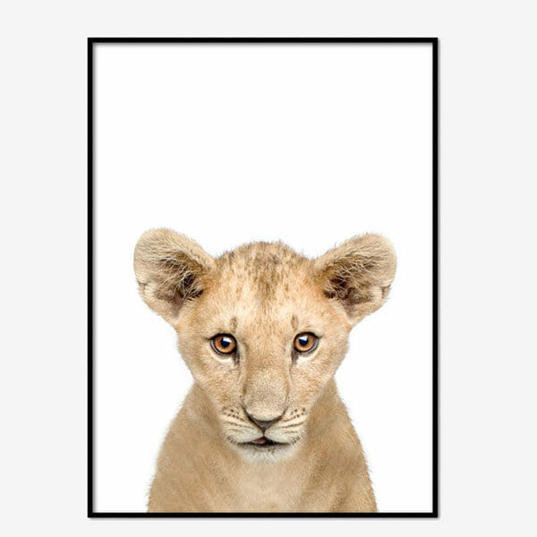 Poster Lion Cub