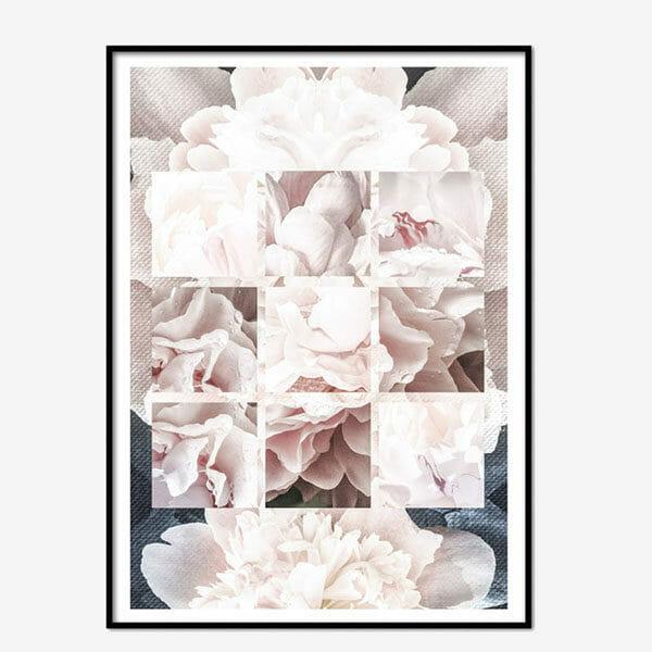Poster Midnight Roses