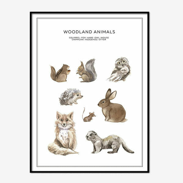 Poster Woodland Animals