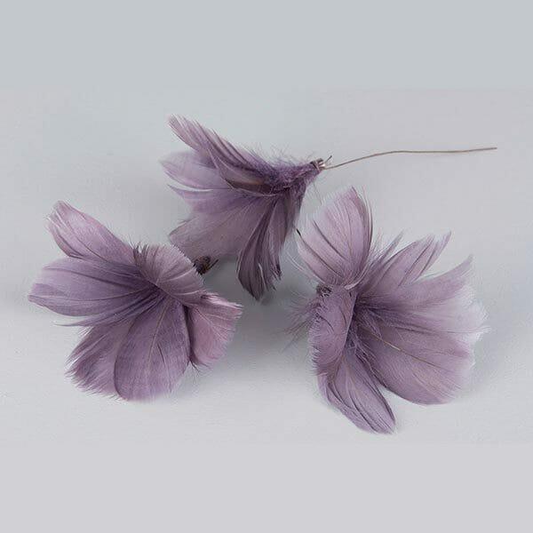 Fjädrar blomma Lila, 12-pack