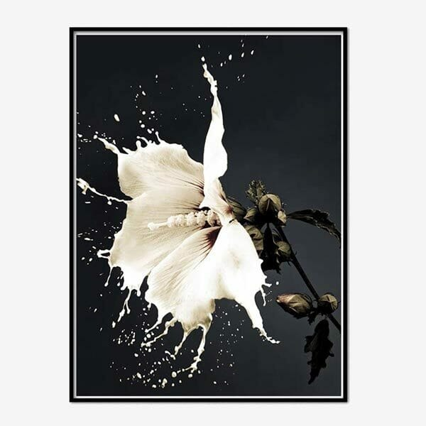 Poster White Hibiscus
