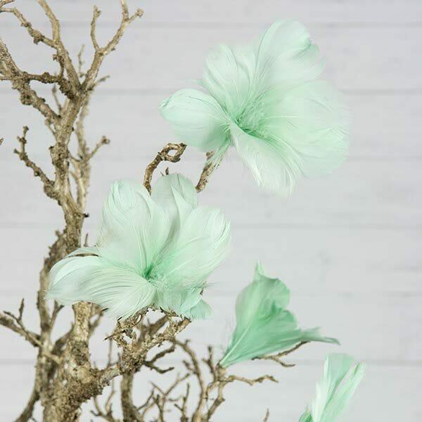 Fjädrar blomma Turkos, 12-pack