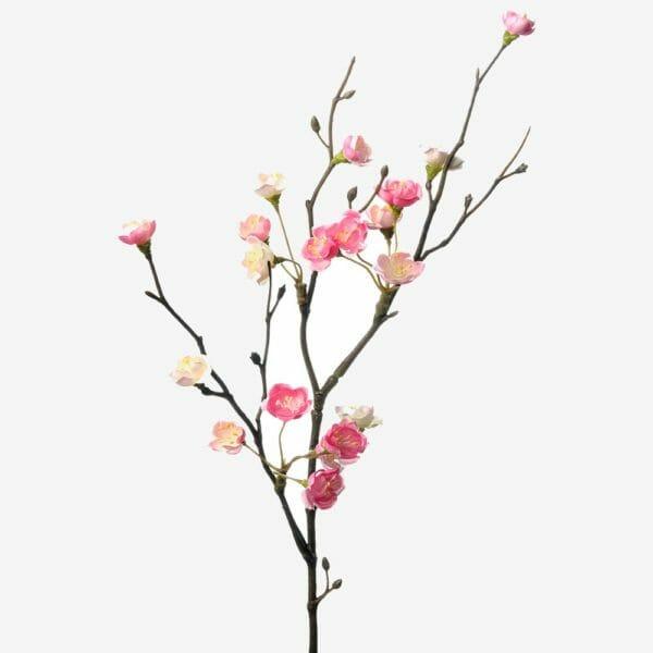 Blomkvist Rosa 50 cm