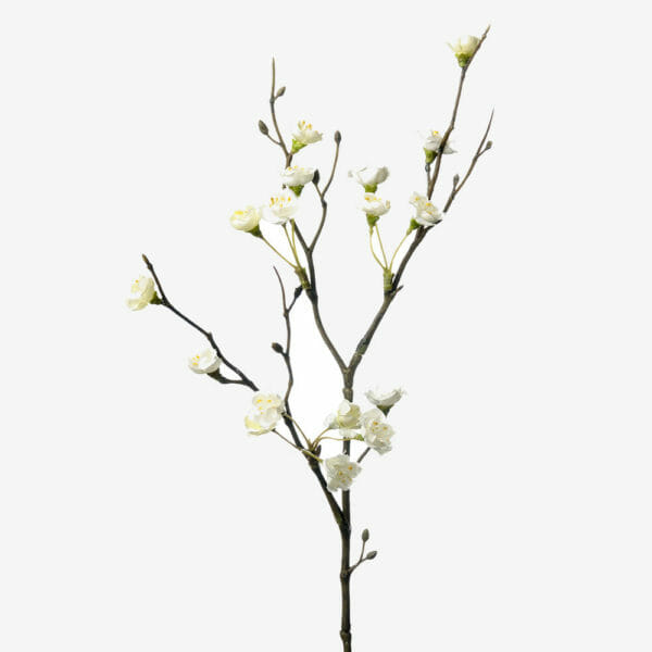 Blomkvist Vit 50 cm