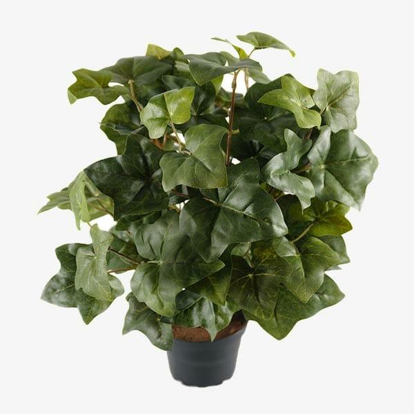 Murgröna konstväxt 40 cm