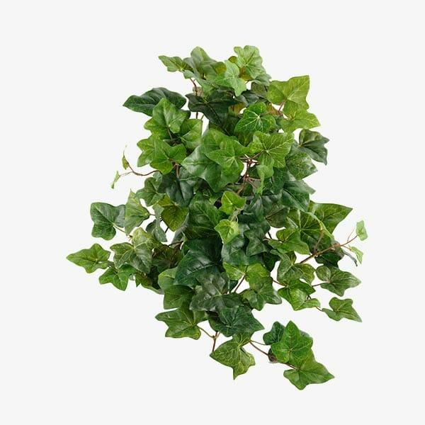 Murgröna konstväxt 50 cm
