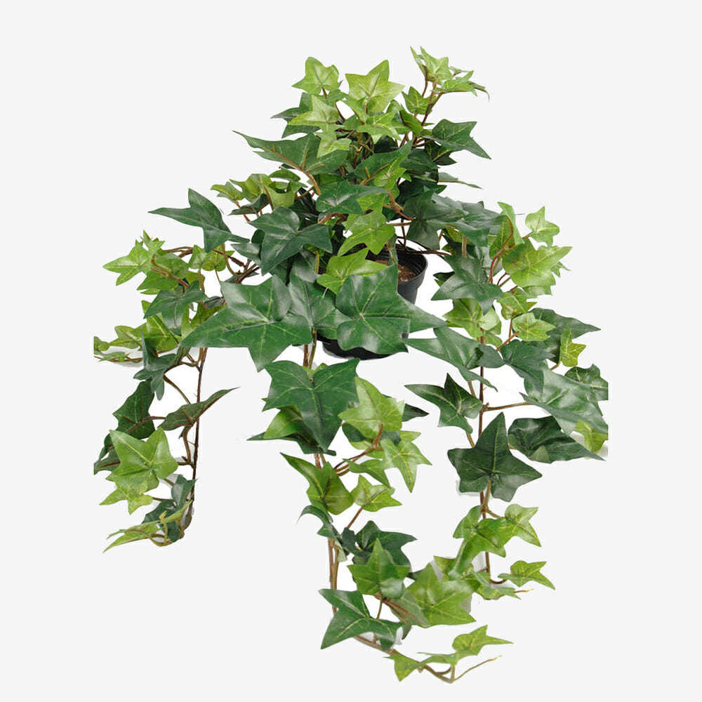 Murgröna konstväxt 60 cm