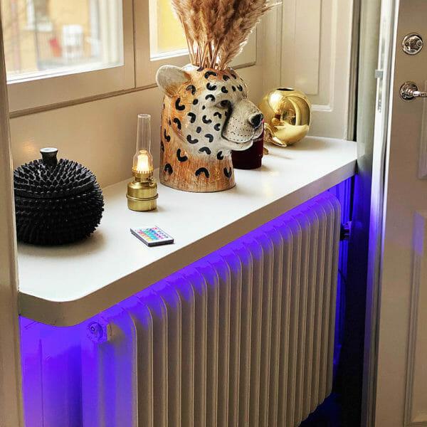 LED-slinga med fjärrkontroll (3m)